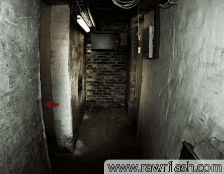Jogos online de terror, escape: Cellar Door.