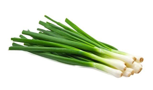 manfaat dan khasiat daun bawang prei untuk kesehatan tubuh