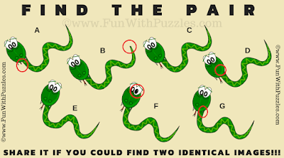 Answer of Find the Pair Snake Puzzle