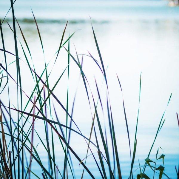 ruhige Stimmung am See | by titatoni.de