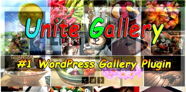 gallery plugin WordPress, video plugin WordPress