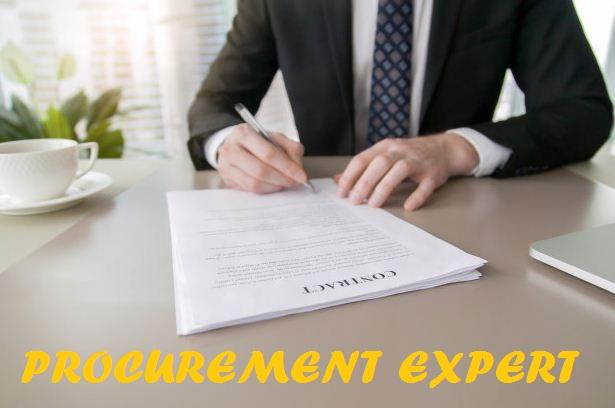 Procurement Expert Duties and Responsibilities