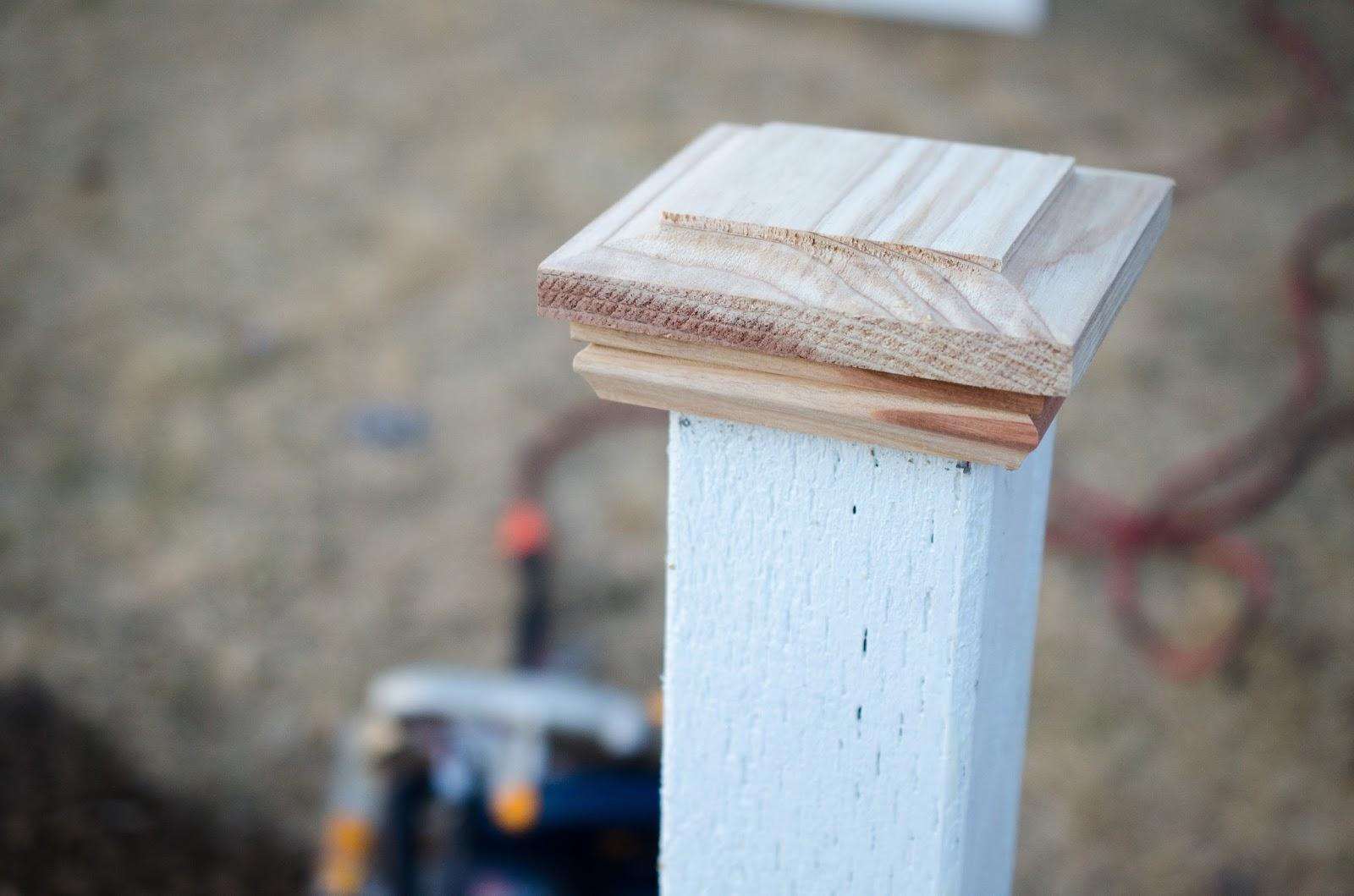 Snugglebug University: A DIY Fence and Drought Tolerant