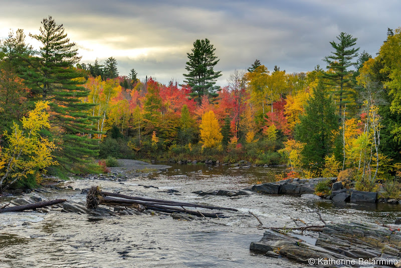 Autumn Things to Do in Moosehead Lake Maine