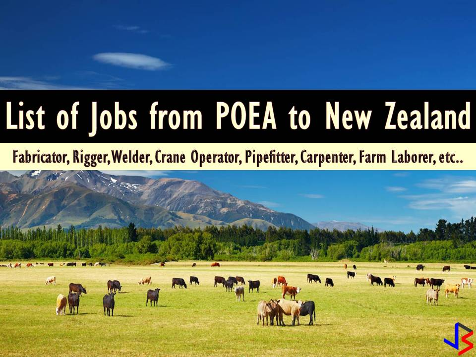 More than 800 Job Vacancies For Filipinos to New Zealand