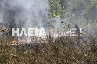 Ηλεία: Νέος συναγερμός για πυρκαγιά κοντά σε Ξηρόκαμπο - Νεμούτα Νεότερη ενημέρωση