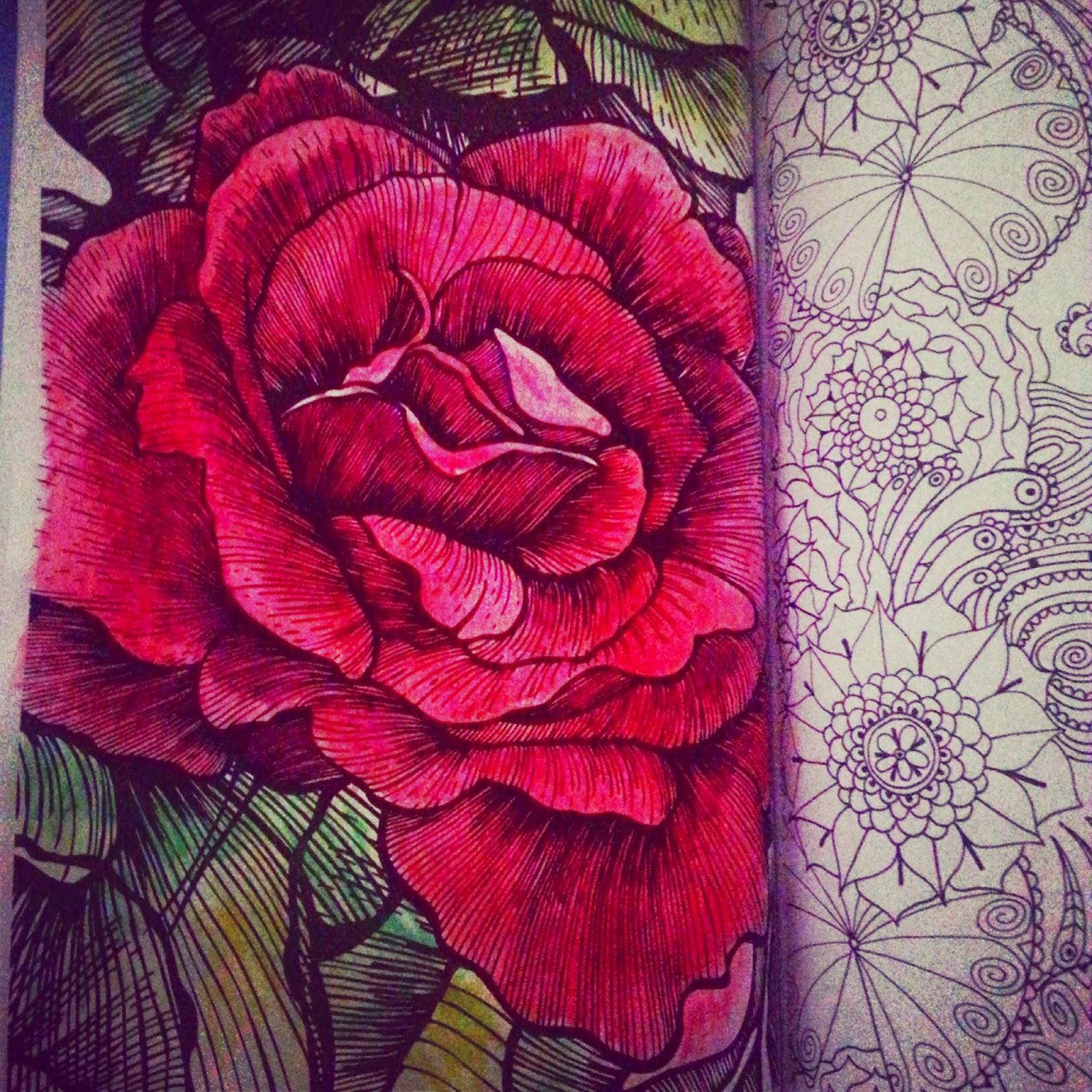 Imagenes De Rosas Rojas Para Colorear