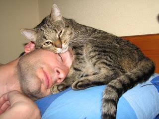 мужчина и кошка