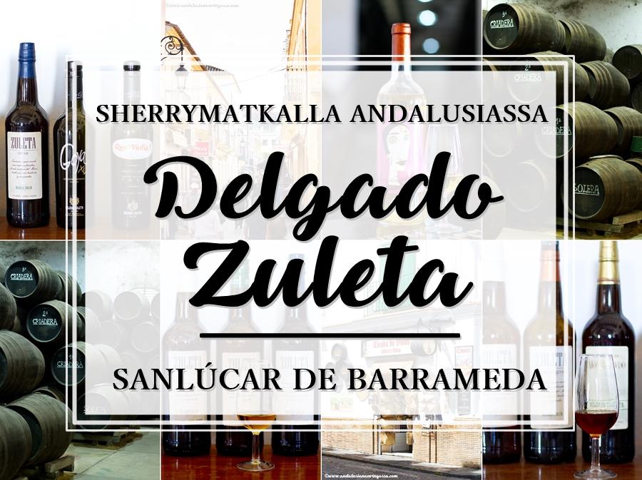 Andalusian auringossa_ruokablogi_matkablogi_viiniblogi_Delgado Zuleta_Andalusia_sherrymaa_sherry