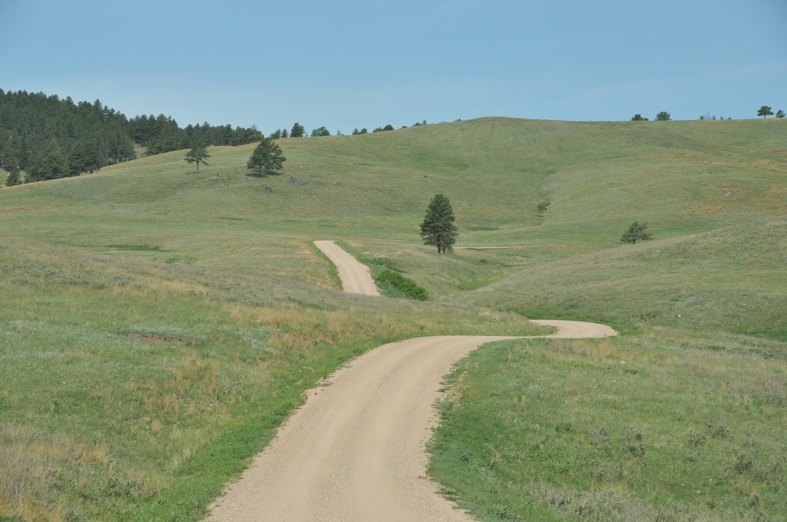The Good Ride >> Custer State Park, South Dakota | 3 Old Ladies' Great American Road Trip