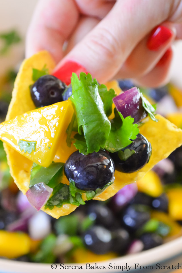 Blueberry Mango Salsa is delicious on chips, served with fish or shimp tacos, or as a condiment.