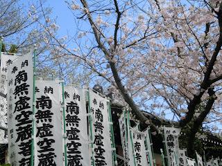 虚空蔵堂の桜