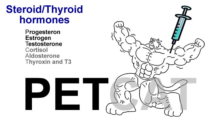Medical MindMaps for USMLE Step 1: Steroid / Thyroid Hormones