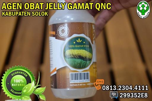 Agen QnC Jelly Gamat Melayani Kabupaten Solok