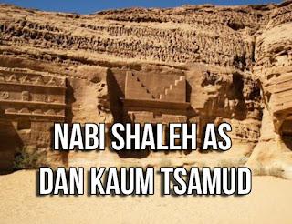 Kisah-teladan-Nabi-Shaleh-as-dan-mukjizat-unta-betina-kepada-Kaum-Tsamud