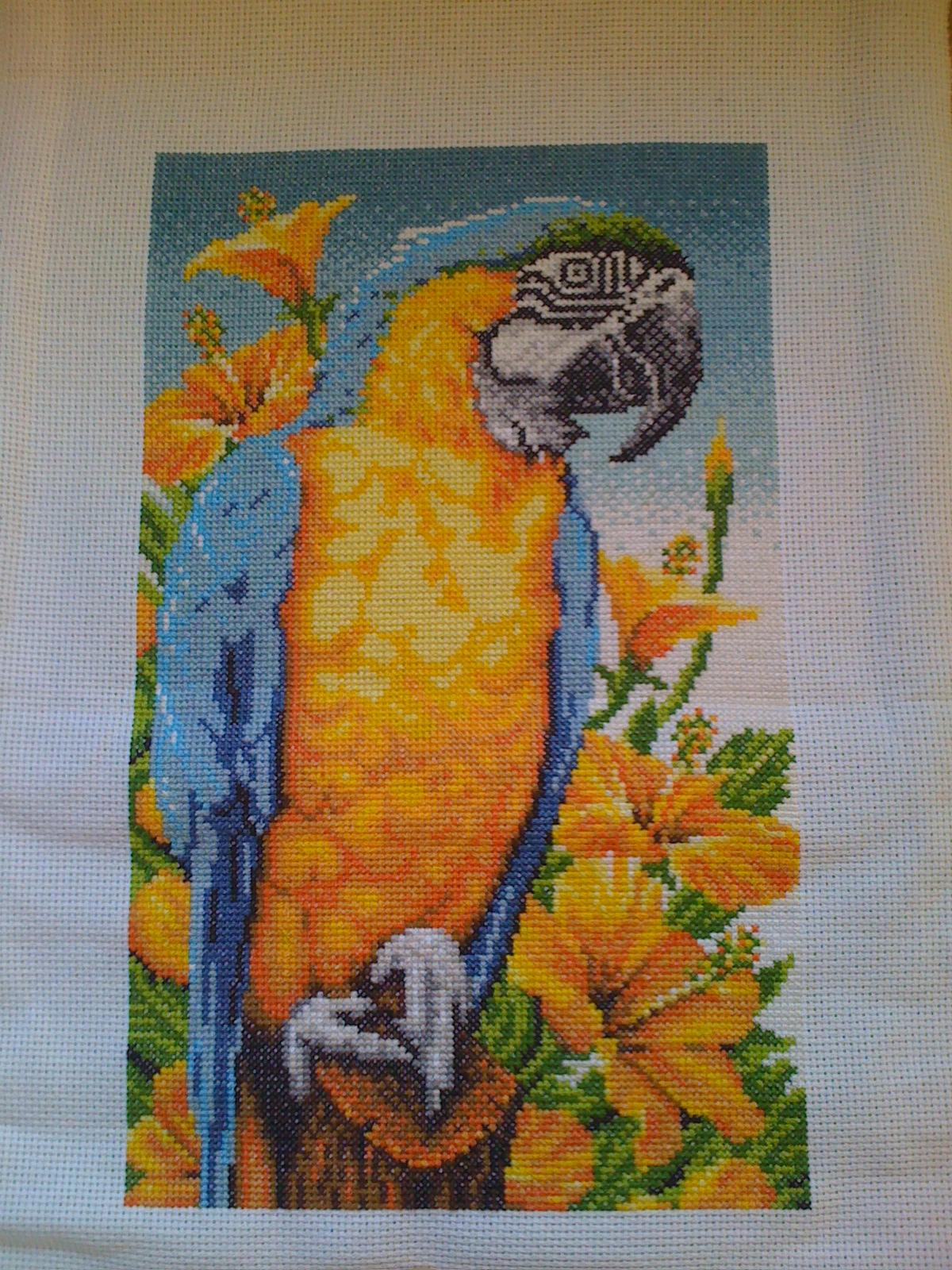 Wendys Wips Macaw Latch Hook Pattern Now A Cross Stitch