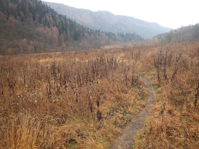 Озеро Кардывач, Красная поляна, Кавказские горы, тропа, осень