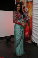Regina Casandra in Lovely Beautiful saree Stunning Pics ~  Exclusive 15.JPG