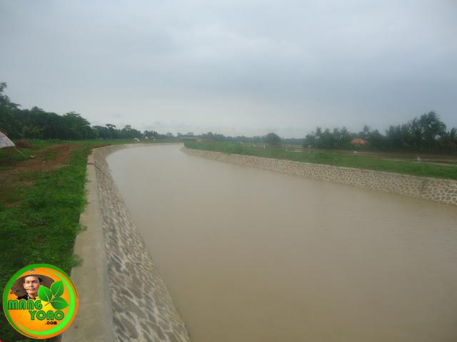 Foto : Wajah baru!!... Sungai Ciasem, Bendungan Macan, Pagaden Barat, Subang 2016. Arah menjauh Bendungan Gondang / bakan bandung, arah mendekat Jembatan Madrasah Kp. Gardu.