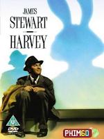 Chú Thỏ Harvey