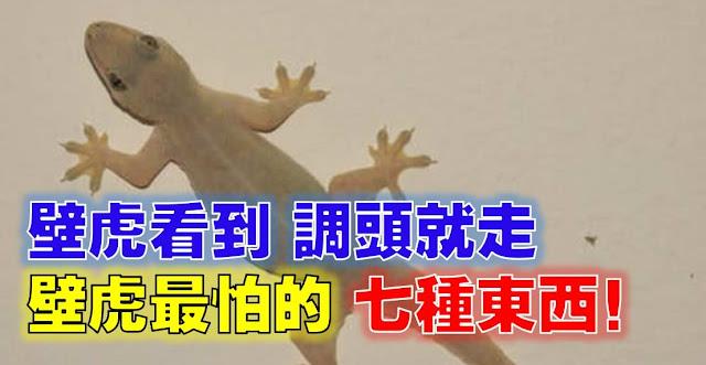 http://www.sharetify.com/2016/06/7_26.html