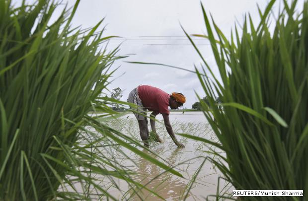 हरित महाराष्ट्र अभियान