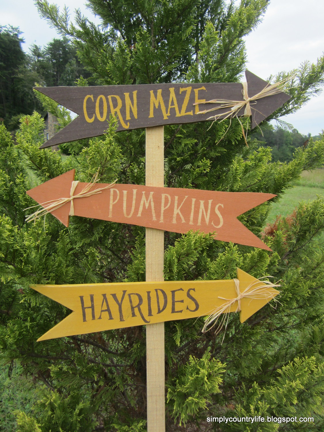 Simply Country Life: Scrap Wood turned into Fall Yard Signs