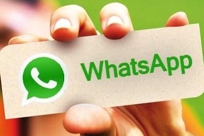 Cara Membatalkan Pesan Yang Terkirim Di Aplikasi Whatsapp