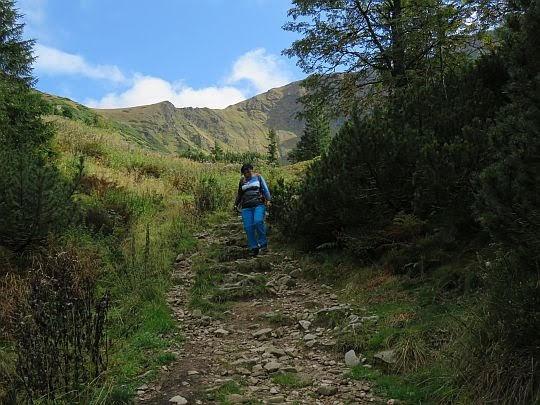 Starorobociańska Dolina.