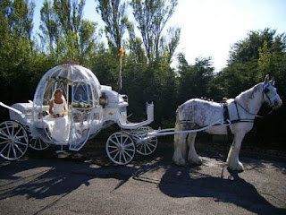 Elegant and Luxurious Cinderella Wedding Carriages and Horses