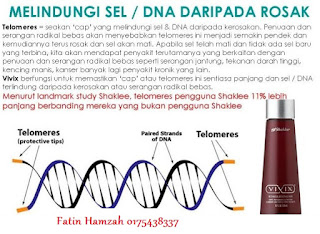 vivix-telomeres