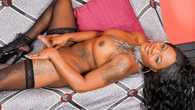 Black-tgirls – Sexy Drea Returns!