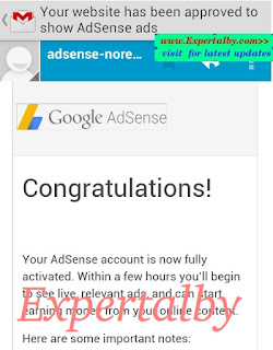 Get Google adsense approval in 2 days proof screenshot