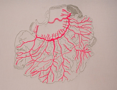 12-Mesentery-Juana-Gómez-Embroidered-Anatomy-exposing-Internal-Physiology-www-designstack-co