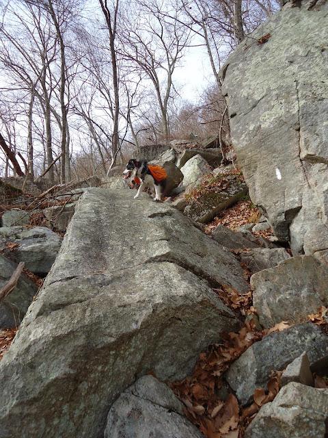 Hiking   Earth Trekkers