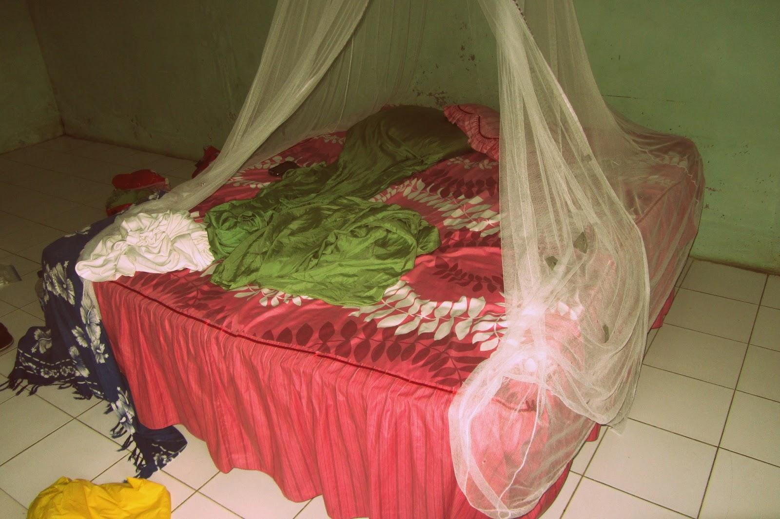 reisekribbeln 224 n chte. Black Bedroom Furniture Sets. Home Design Ideas