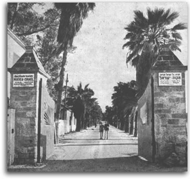 שער הכניסה למקווה ישראל