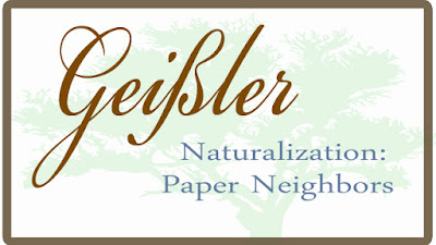 Naturalization Paper Neighbor Analysis