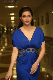 Mannara Chopra in Short Blue Dress at Rogue Movie Teaser Launch 1st March 2017 050.JPG