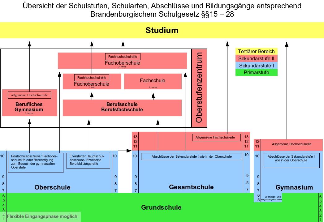 Schule und dann das schulsystem in brandenburg for Schule grafik
