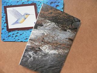 álbuns de fotos