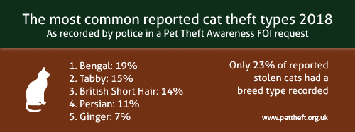 Only 23% of reported stolen cats had a breed type recorded by police. The top five stolen in 2018 were Ginger 7%, Tabby 11%, British Shorthair 14%, Tabby 15% and Bengal 19%