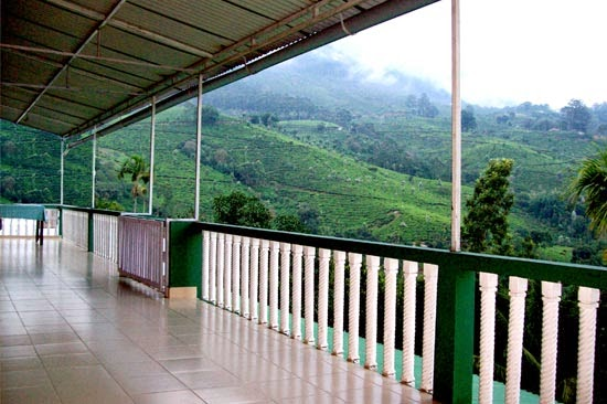 Munnar Homestay with swimming pool     Munnar Homestay near town     Munnar budget Homestay     Munnar luxuary Homestay     Munnar cheap Homestay     Munnar Dormitory Homestay