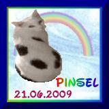 http://www.pinsels-stubentiger-homepage.de/
