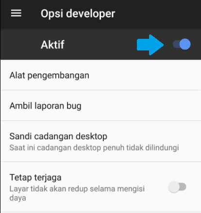 cara disable Opsi developer