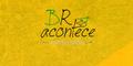 https://www.bracontece.com.br/