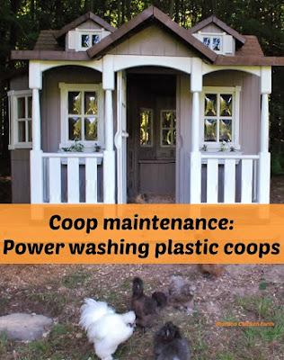 power washing chicken coop