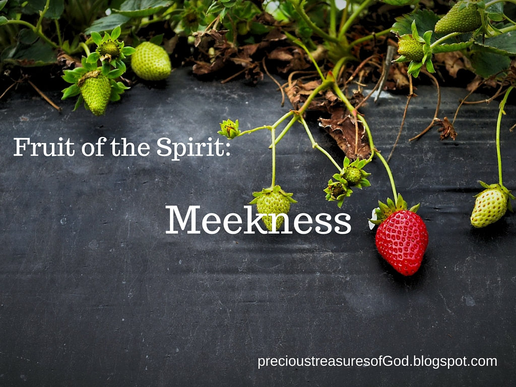 the fruit of the spirit longsuffering Longsuffering is a fruit of the spirit (galatians 5:22) this is evidence that we do not become longsuffering in one day but by continuously living in the spirit and keeping all our evil tendencies on the cross when the cross is mentioned in the bible, it most often does not refer to a physical wooden cross, except when specifically describing jesus' crucifixion on calvary.