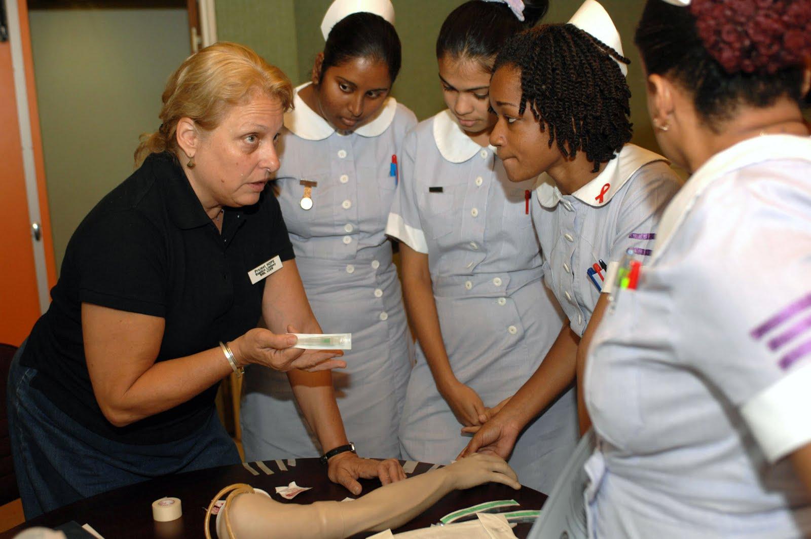 Nanda Nurse Diary Role Of Nurses As Implementers
