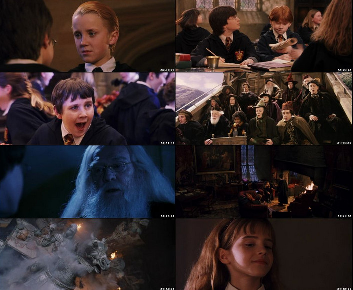harry potter and the sorcerer stone dual